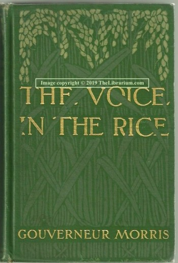 Image for The Voice in the Rice