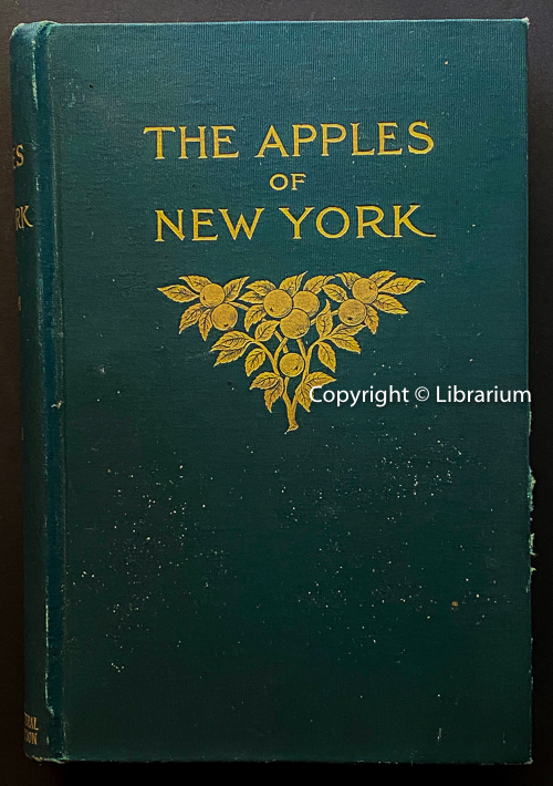 Image for The Apples of New York: Report of the New York Agricultural Experiment Station for the Year 1903.  Vol. II only. (two, 2)