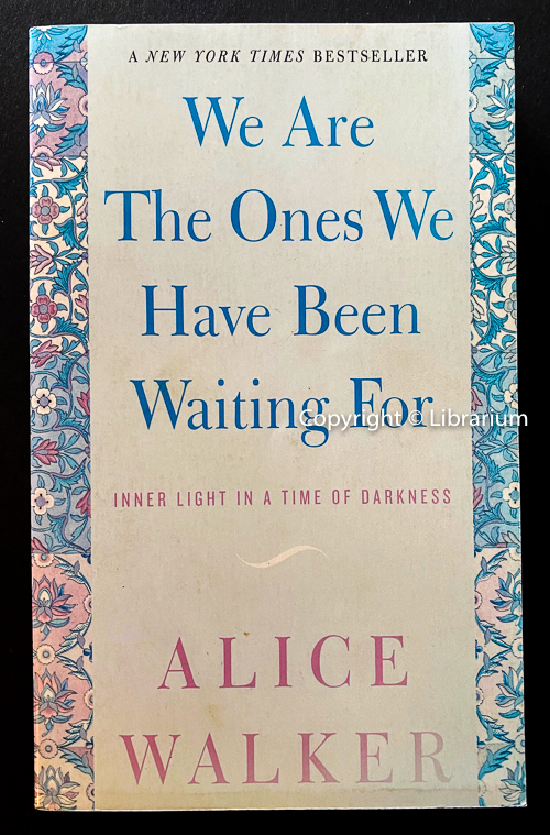 Image for We Are the Ones We Have Been Waiting For: Inner Light in a Time of Darkness